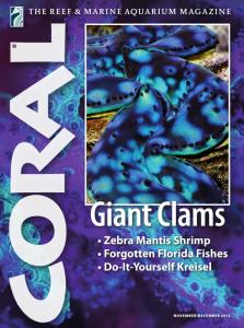 Coral Magazine 2012